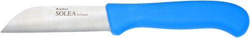 Groentemes rv 10 cm blauw kunststof heft